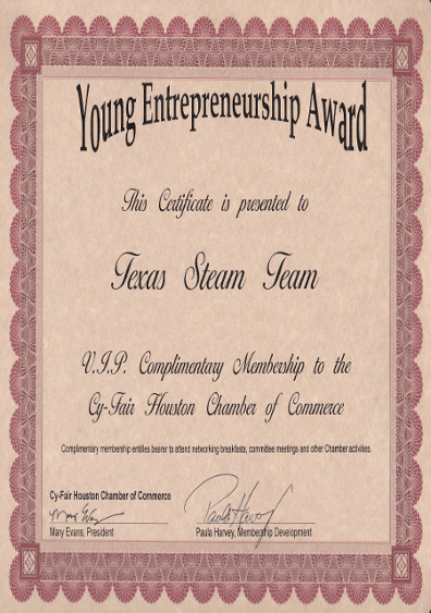 Young Entrepreneurship Award